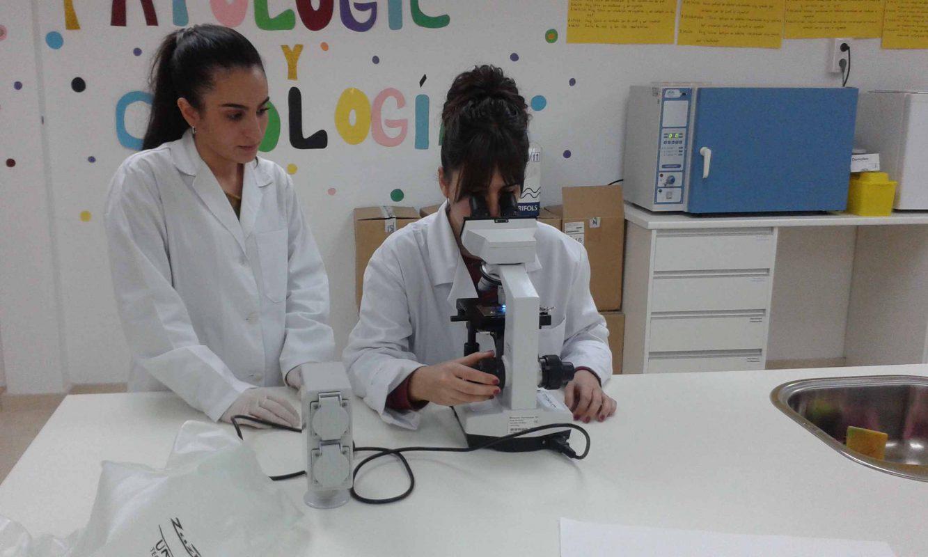 las-bacterias-del-yogur-a-vista-de-microscopio-bacterias-y-mas-bacterias-1.jpg