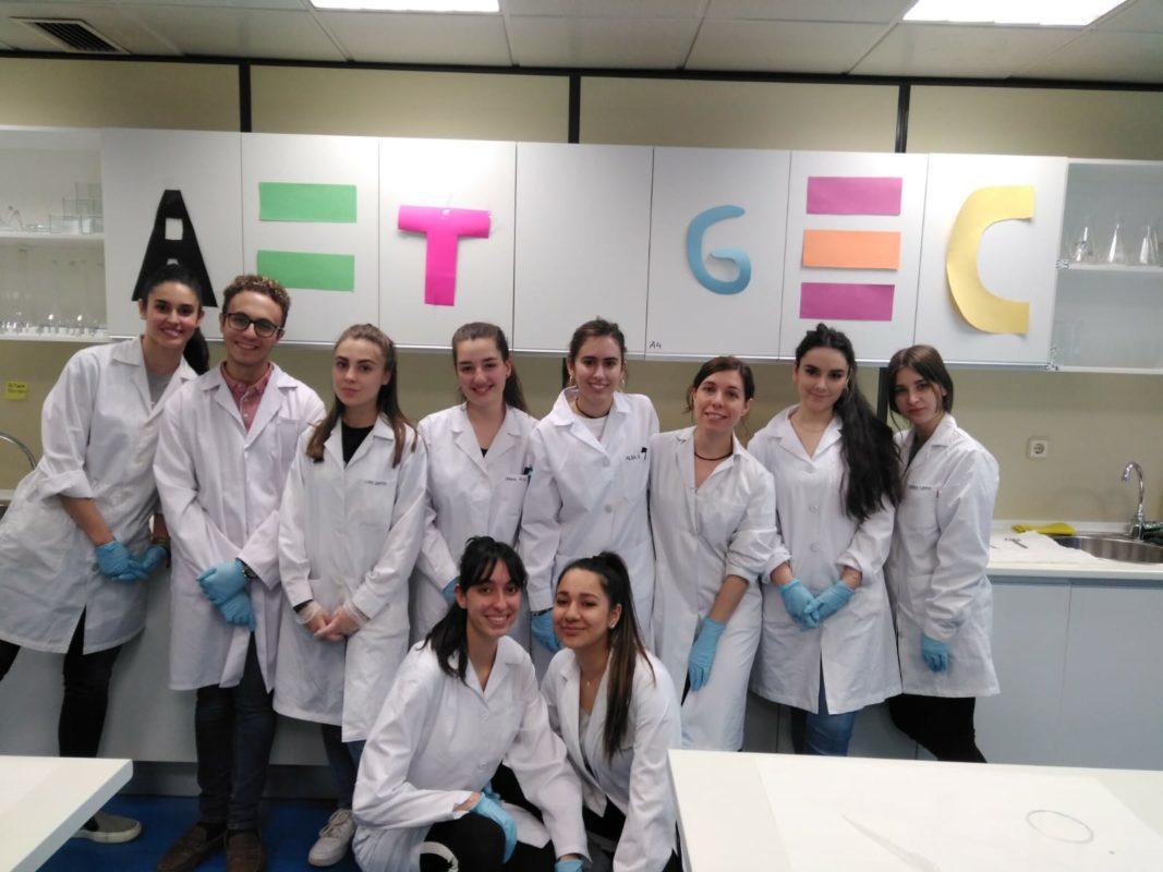Jornadas estudiantiles en Cesur Madrid II