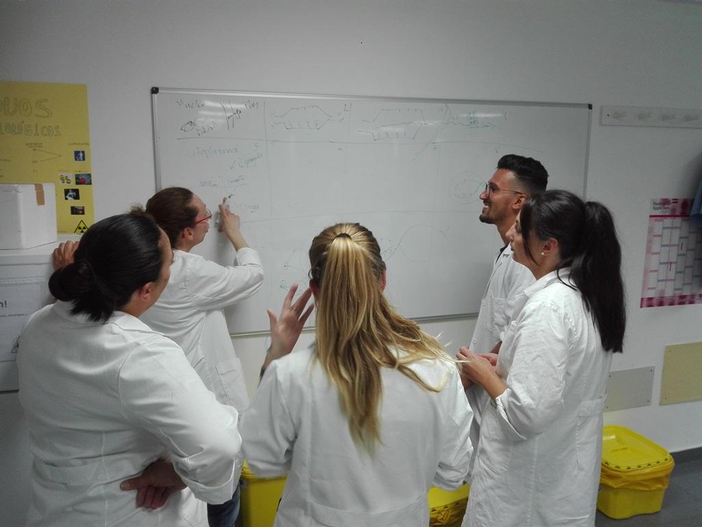 """Presentación en """"Biología Molecular y Citogenética"""""""